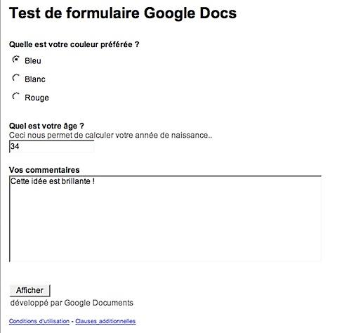2008-02-12 formulaire Google Docs.png
